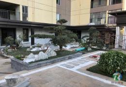楚雄屋顶花园